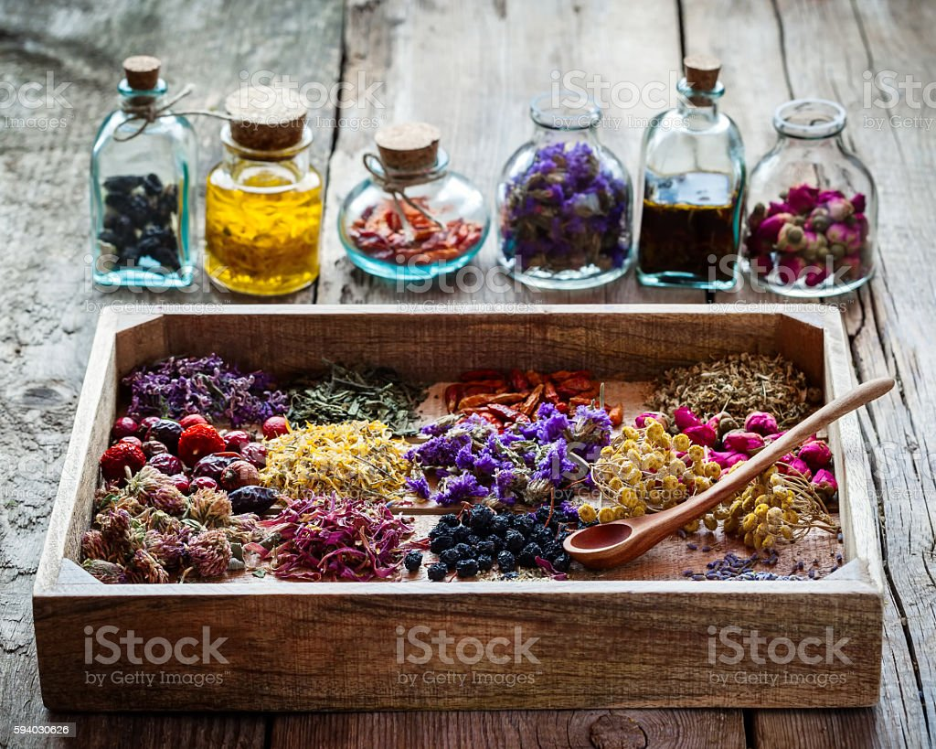 Healing herbs in wooden box and bottles of tincture stock photo