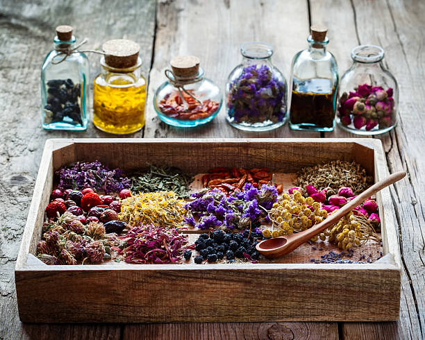 healing herbs in wooden box and bottles of tincture - 薬草 ストックフォトと画像