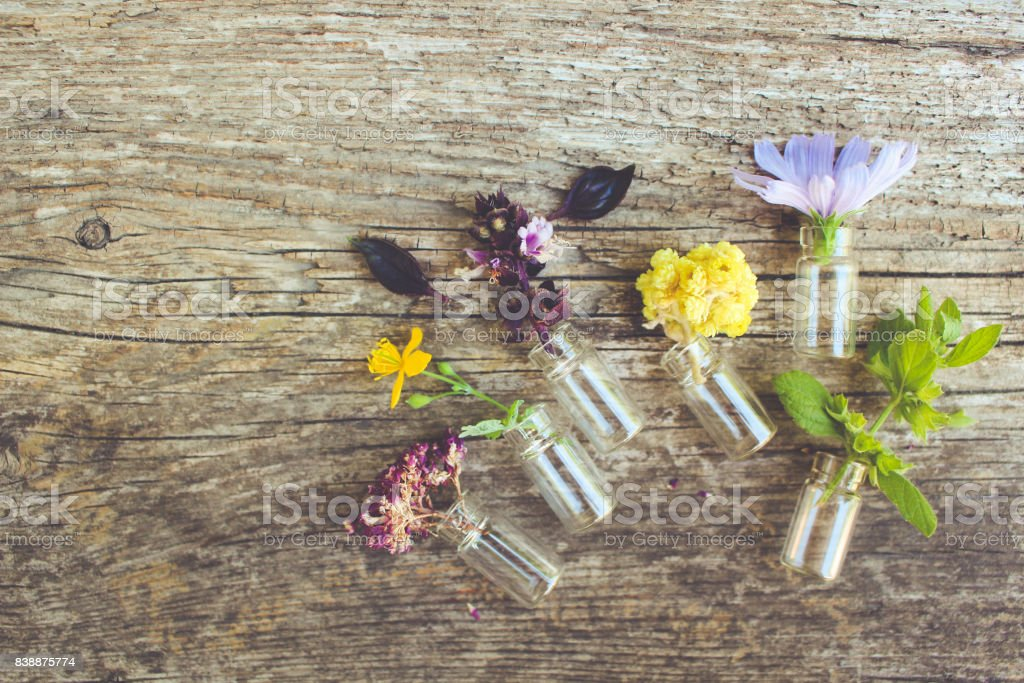 Healing herbs on wooden background. Top view. Toned image. stock photo