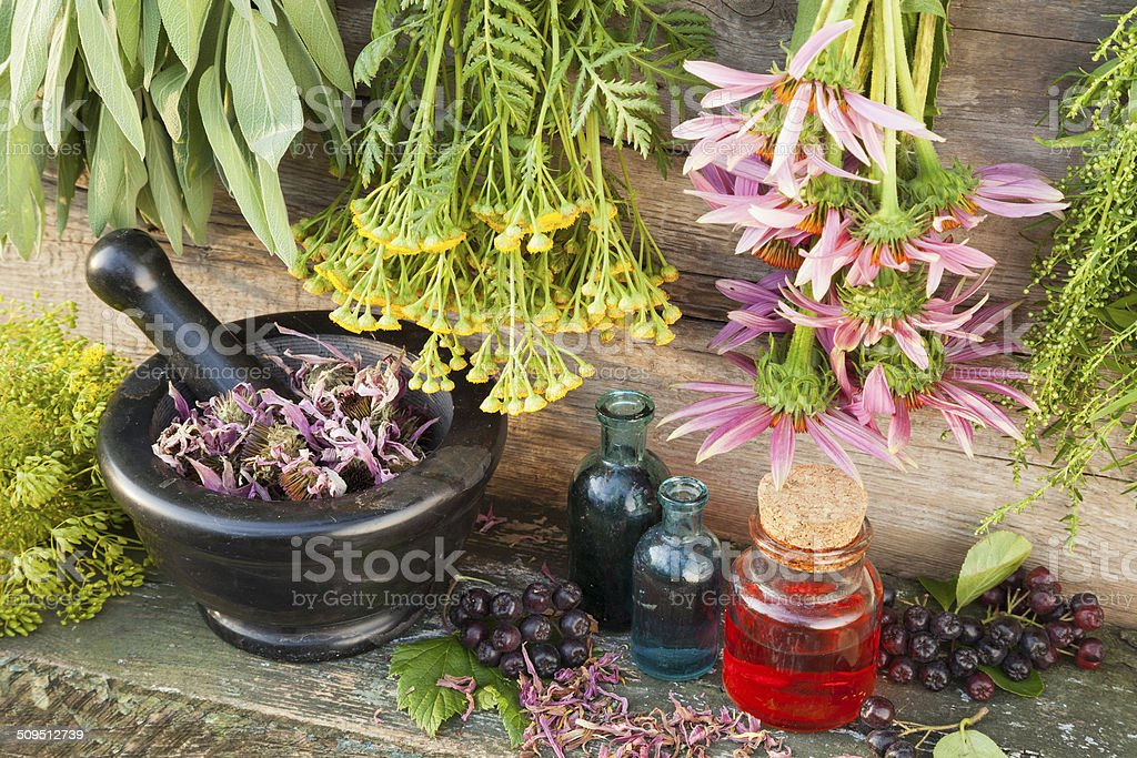 healing herbs on wooden wall, mortar with dried plant stock photo