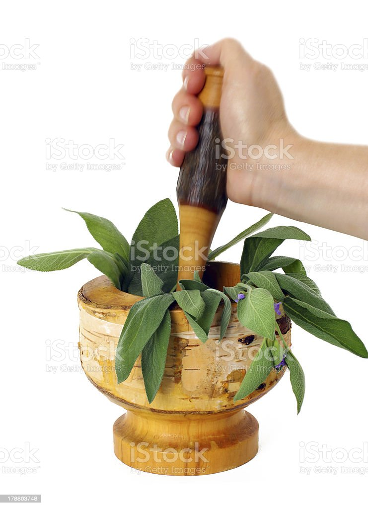 Healing herbs with mortar and pestle royalty-free stock photo