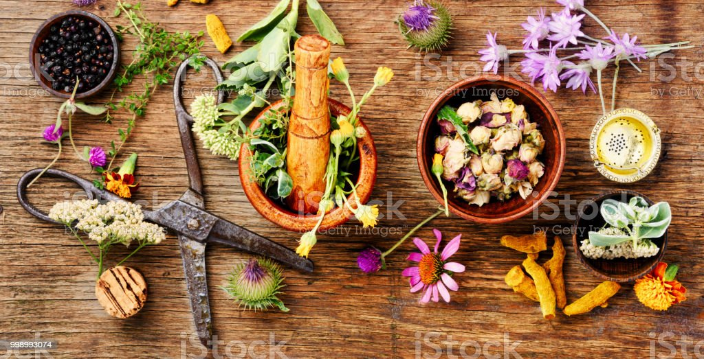Healing herbs with mortar stock photo