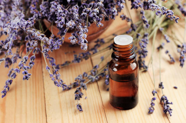 huile essentielle de lavande pour le traitement de beauté et désodorisant maison de guérison - huile photos et images de collection