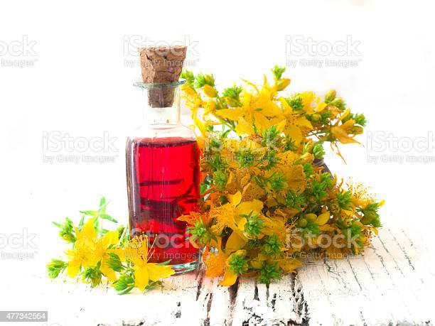 Healing oil made of st johns wort picture id477342554?b=1&k=6&m=477342554&s=612x612&h=aenskw8 dqdo19xvab2ehlq3lo7pyv0zncwa435z9xc=