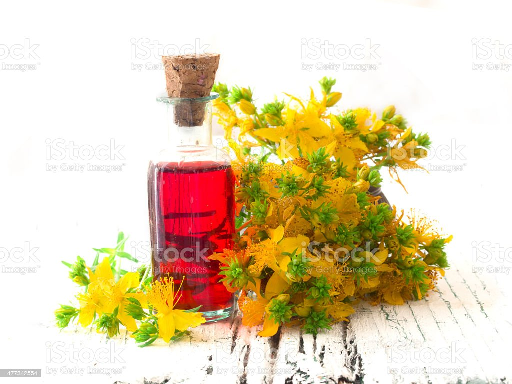 healing oil made of St John's wort stock photo