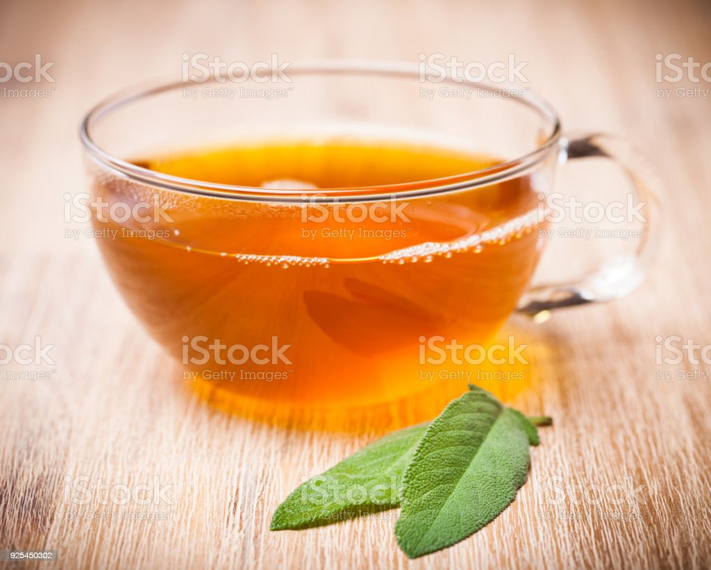 healing plants: Sage (Salvia officinalis) tea with two leaves stock photo
