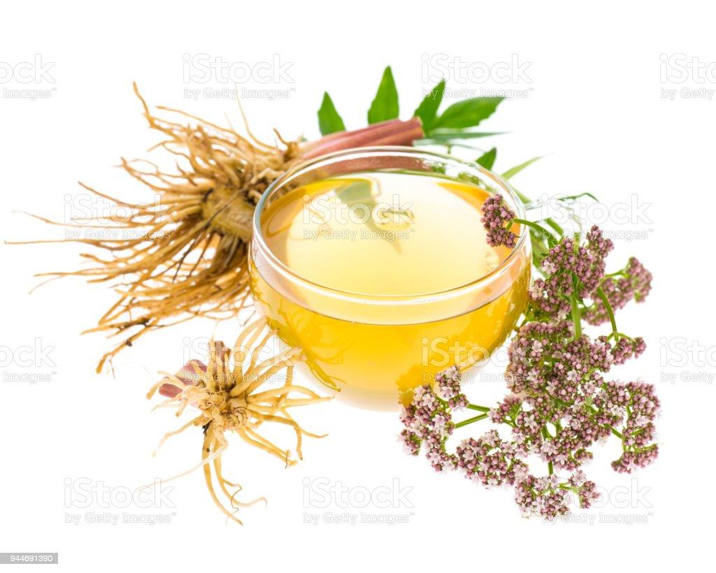 Heilpflanzen: Baldrian (Valeriana Officinalis) Tee mit Wurzeln, Blätter und Blüten – Foto
