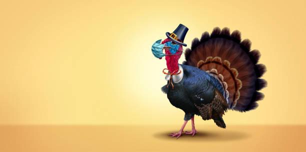 здоровье и день благодарения - thanksgiving turkey стоковые фото и изображения
