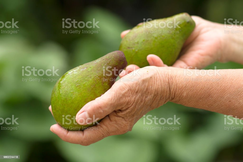 Health care and Fresh vegetable stock photo