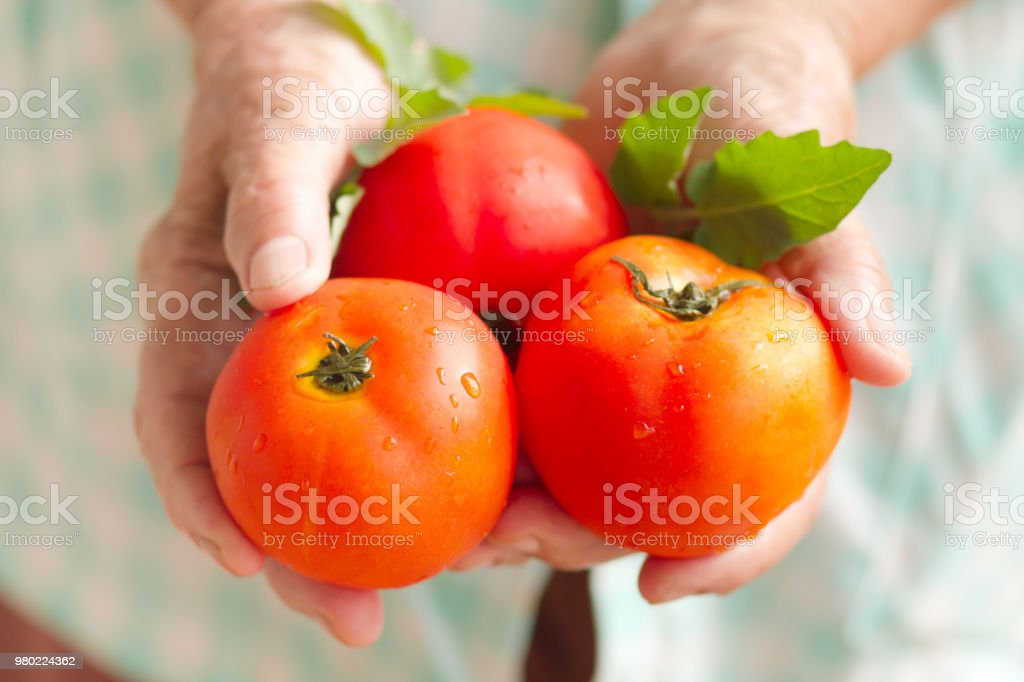 Health care and Vegetarian food stock photo