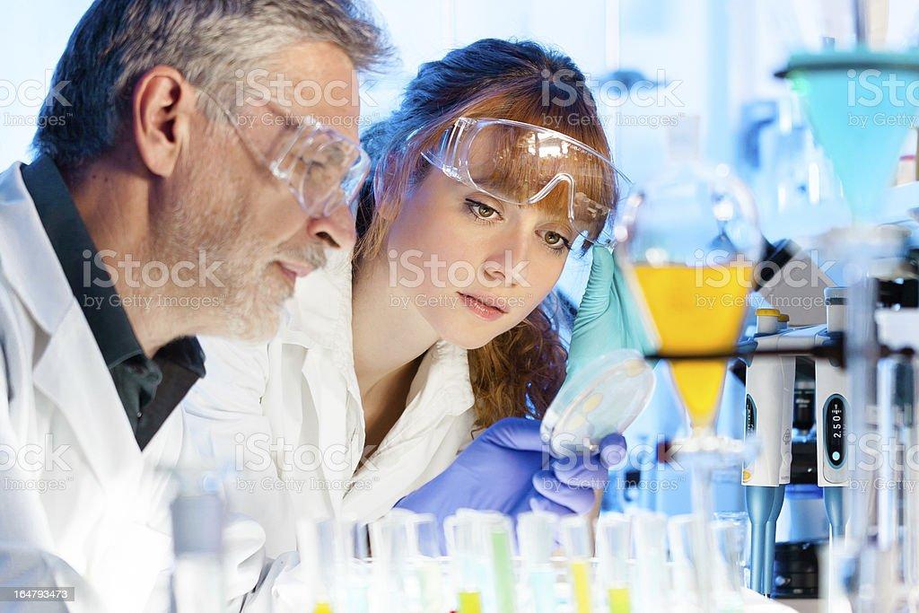 Health care professionals in lab. stock photo
