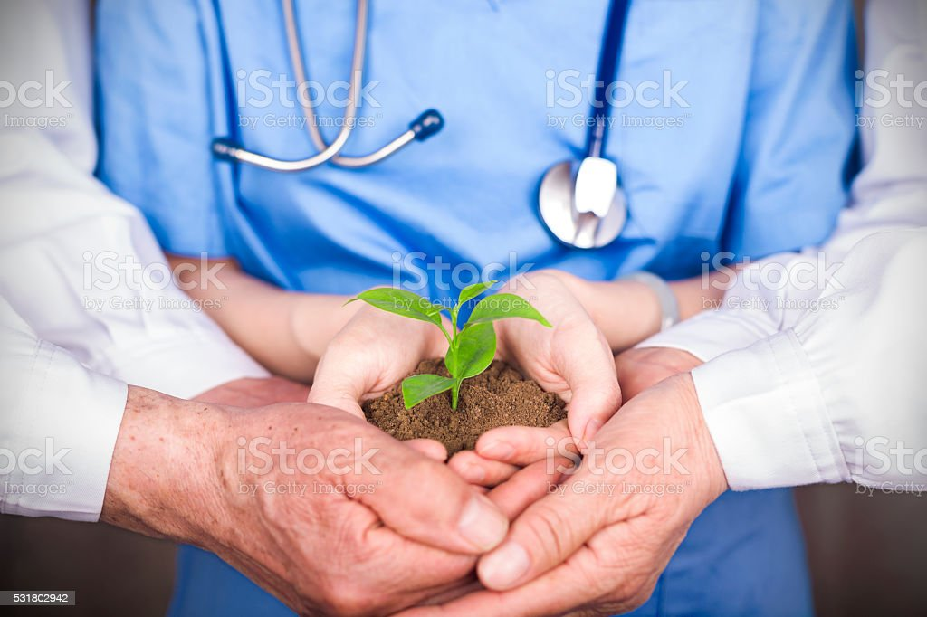 doctor and nurse holding new life in hands