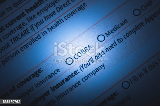 A stock photo of a US Healthcare / Health insurance application form. Photographed using Canon EOS 5DSR at 50mp. Focused on the words