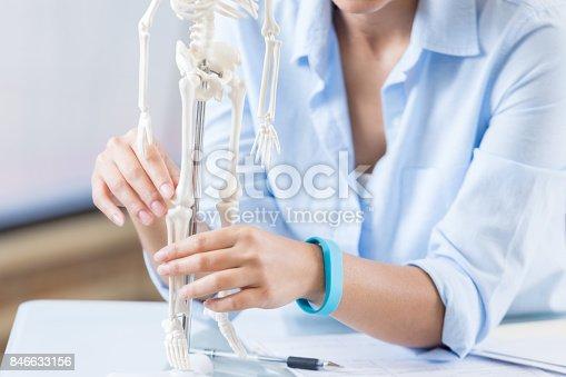 istock Healthcare professional examines skeletal system model 846633156