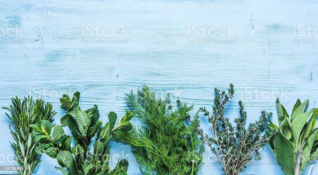 Healthy and aromatic herbs and spices stock photo