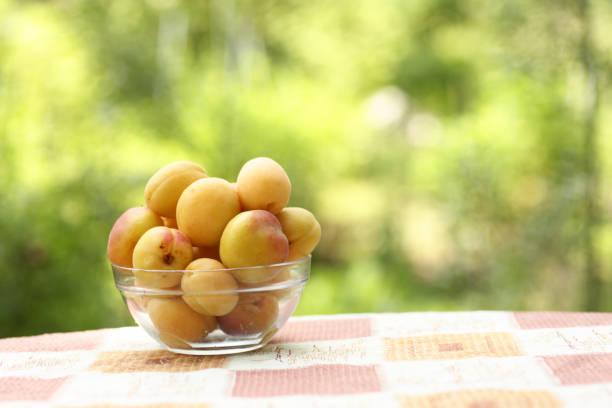 healthy breakfast - apricots in bowl close up vertical photo with copy space on green grass background - salud zdjęcia i obrazy z banku zdjęć