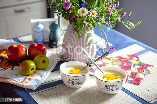 Healthy breakfast. Bowl of oat granola with yogurt, fresh berries