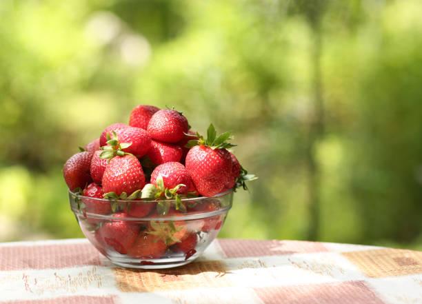 healthy breakfast - strawberries in bowl close up horizontal photo with copy space on green grass background - salud zdjęcia i obrazy z banku zdjęć