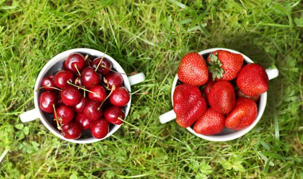 healthy breakfast - sweet cherry and strawberry in bowl close up photo on green grass background - salud zdjęcia i obrazy z banku zdjęć