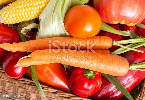 Healthy colorful vegetables grown in the garden, autumn harvest. Natural tomatoes, corn cobs and carrots