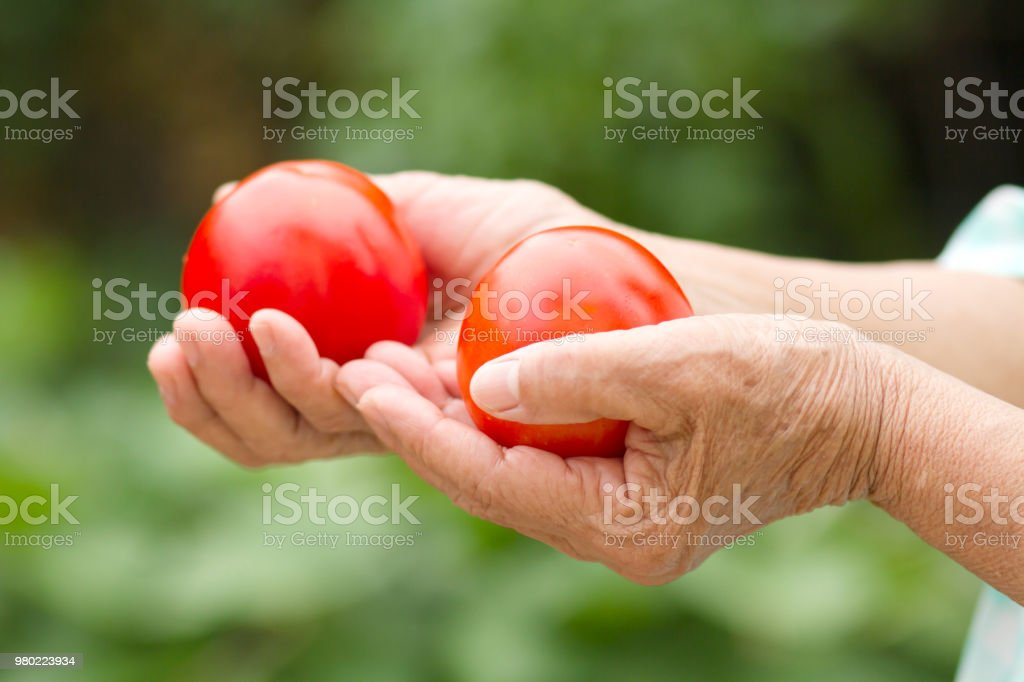 Healthy eating and Fresh vegetable, food balance stock photo