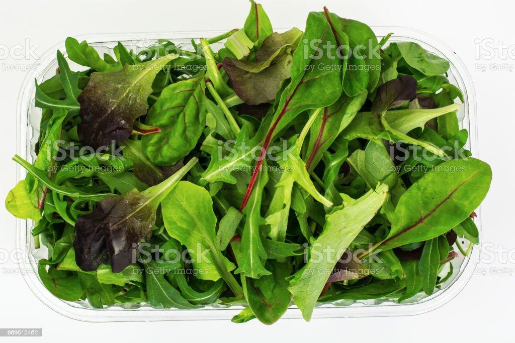 Healthy eating of arugula, mitsuna, chard, red mustard in plasti stock photo