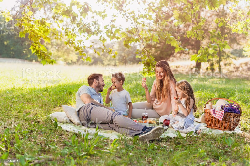 Healthy Family enjoying summer picnic in the nature stock photo