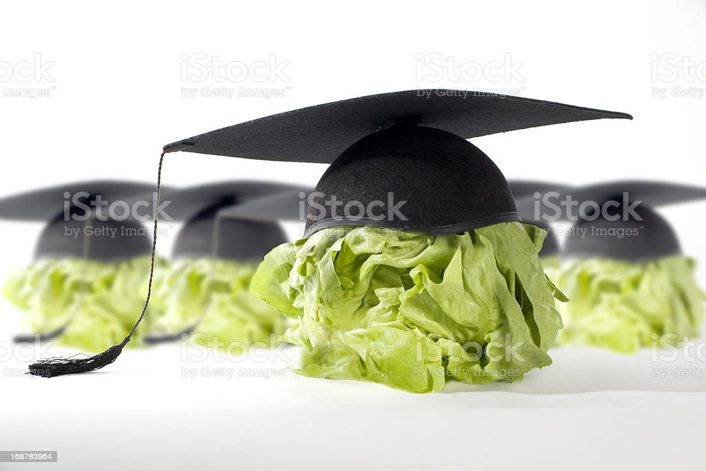 Healthy Food is good for your brain royalty-free stock photo