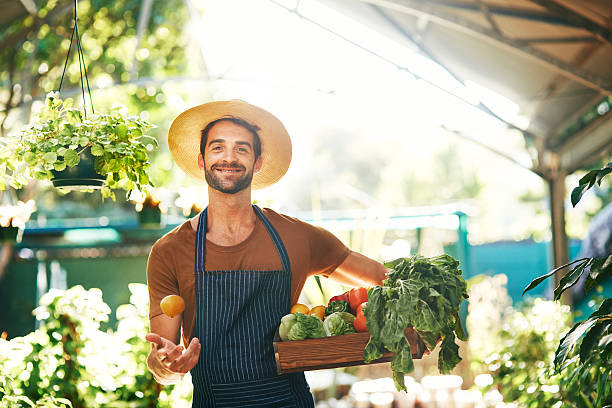 Healthy food makes for healthy living Portrait of a man holding a crate full of fresh produce in a farmer's market grocer stock pictures, royalty-free photos & images