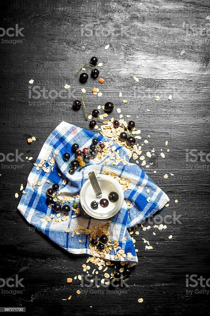Healthy food. Milk cream with oats and wild black currants. Lizenzfreies stock-foto