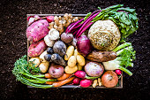 Top view of a large group of multicolored fresh organic roots, legumes and tubers shot on a rustic wooden crate surrounded by soil. The composition includes potatoes, Spanish onions, ginger, purple carrots, yucca, beetroot, garlic, peanuts, red potatoes, sweet potatoes, golden onions, turnips, parsnips, celeriac, fennels and radish. Low key DSLR photo taken with Canon EOS 6D Mark II and Canon EF 24-105 mm f/4L