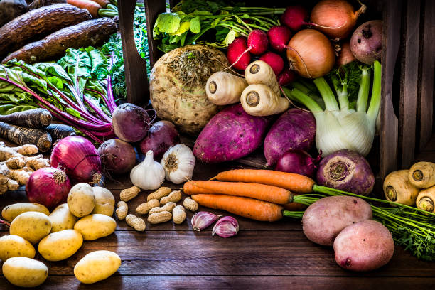Healthy food: organic roots, legumes and tubers still life. Front view of a large group of multicolored fresh organic roots, legumes and tubers shot on a rustic wooden background. The composition includes potatoes, Spanish onions, ginger, purple carrots, yucca, beetroot, garlic, peanuts, red potatoes, sweet potatoes, golden onions, turnips, parsnips, celeriac, fennels and radish. Some elements are on a rustic wooden crate. Low key DSLR photo taken with Canon EOS 6D Mark II and Canon EF 24-105 mm f/4L sweet potato stock pictures, royalty-free photos & images
