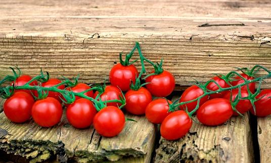Gezonde Voeding Tomaten En Plantaardige Concept Stockfoto en meer beelden van Basilicum