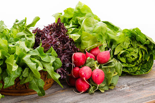 Healthy fresh salad ingredients stock photo
