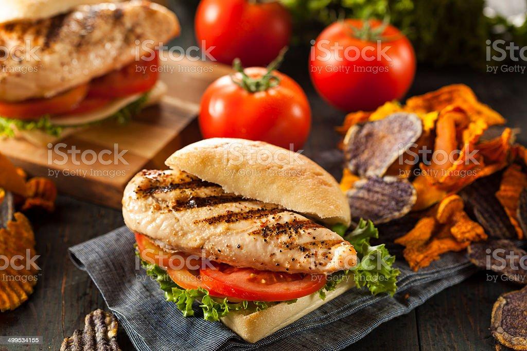 Healthy Grilled Chicken Sandwich stock photo
