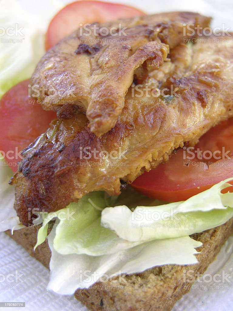 Healthy Grilled Chicken Vert royalty-free stock photo