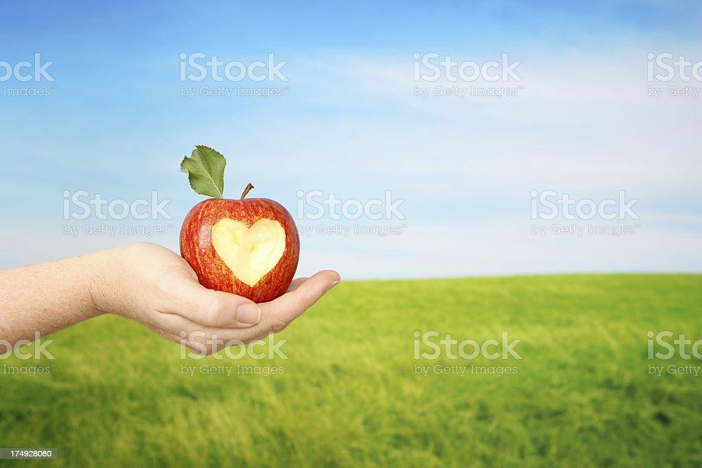 Healthy Heart Vitality stock photo