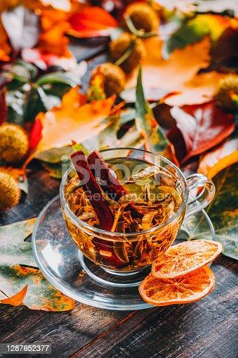 Healthy Herbal Tea in Autumn Leaves