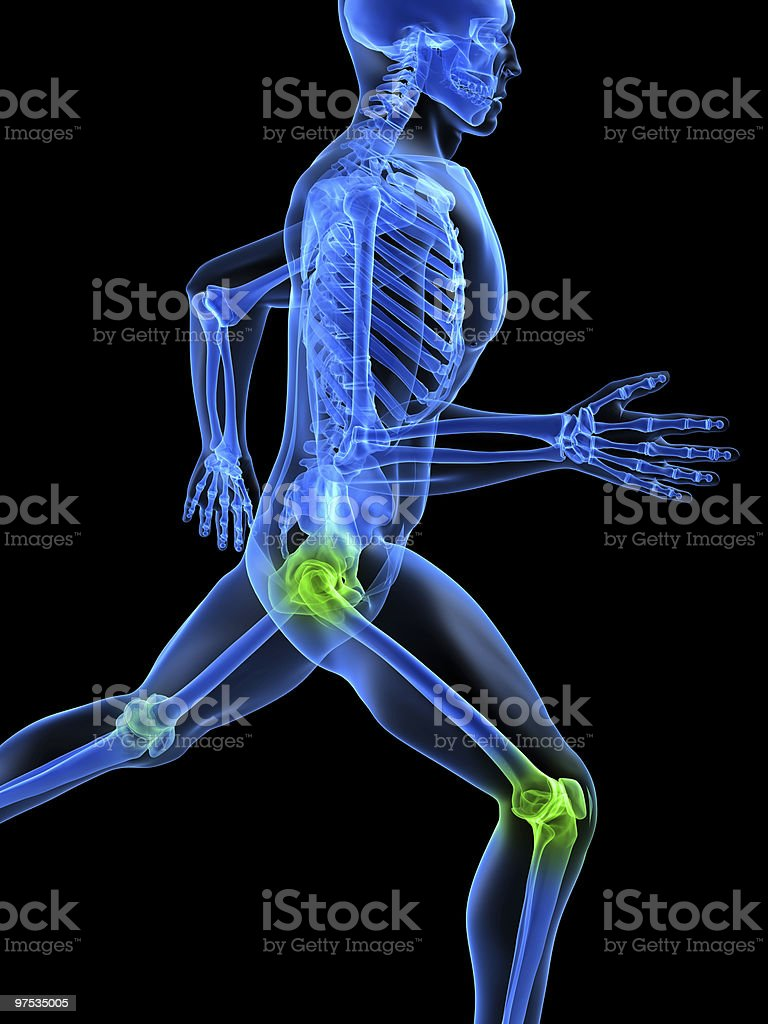 healthy joints royalty-free stock photo