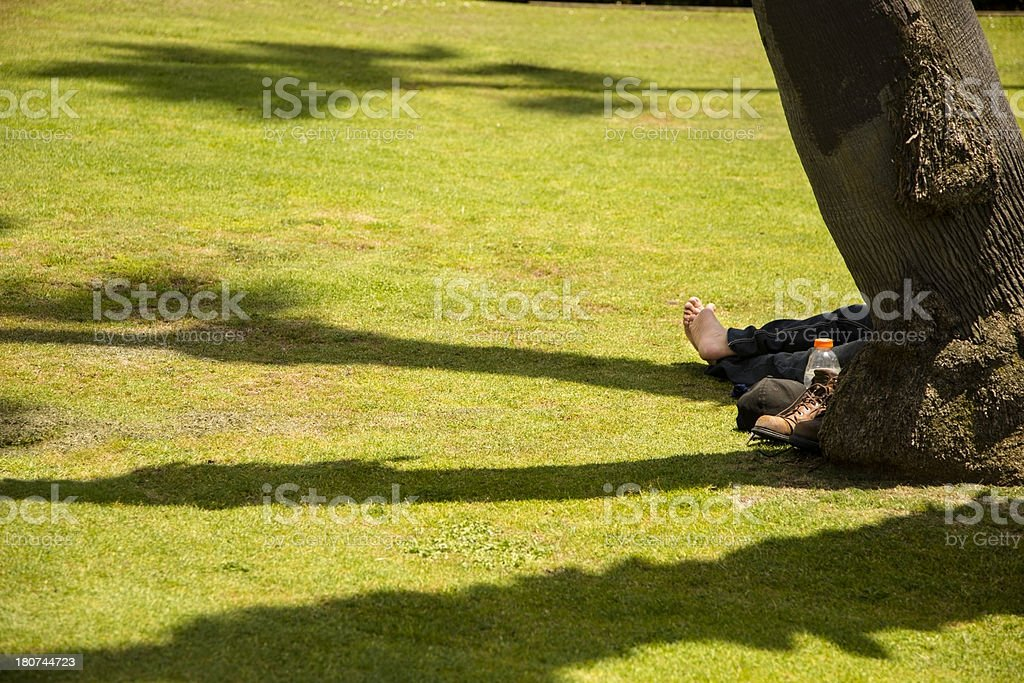 Healthy Lifestyle: Man enjoys nature outdoors. Barefoot in California park stock photo