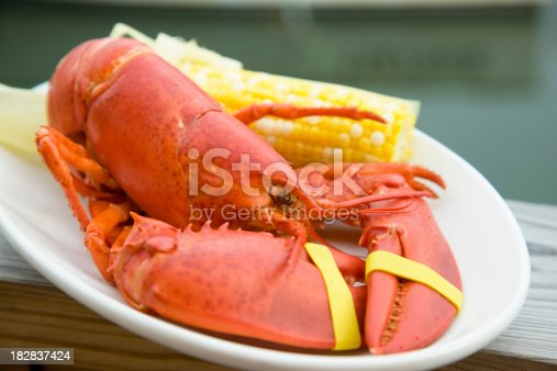 Cooked Maine Lobster with corn cob on white plate.