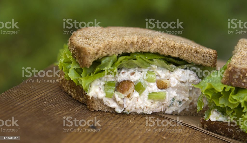 Healthy Lunch, Gourmet Chicken Salad Sandwich & Vegetables on Brown Bread royalty-free stock photo