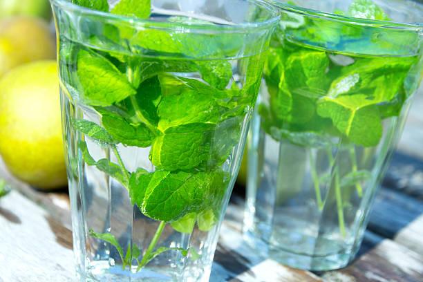 Healthy Mint tea stock photo