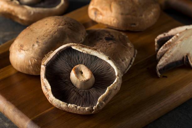 8 429 Portobello Mushroom Stock Photos Pictures Royalty Free Images Istock