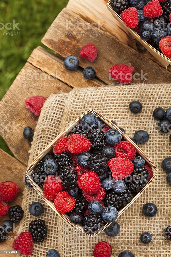 Healthy Organic Ripe Berries stock photo