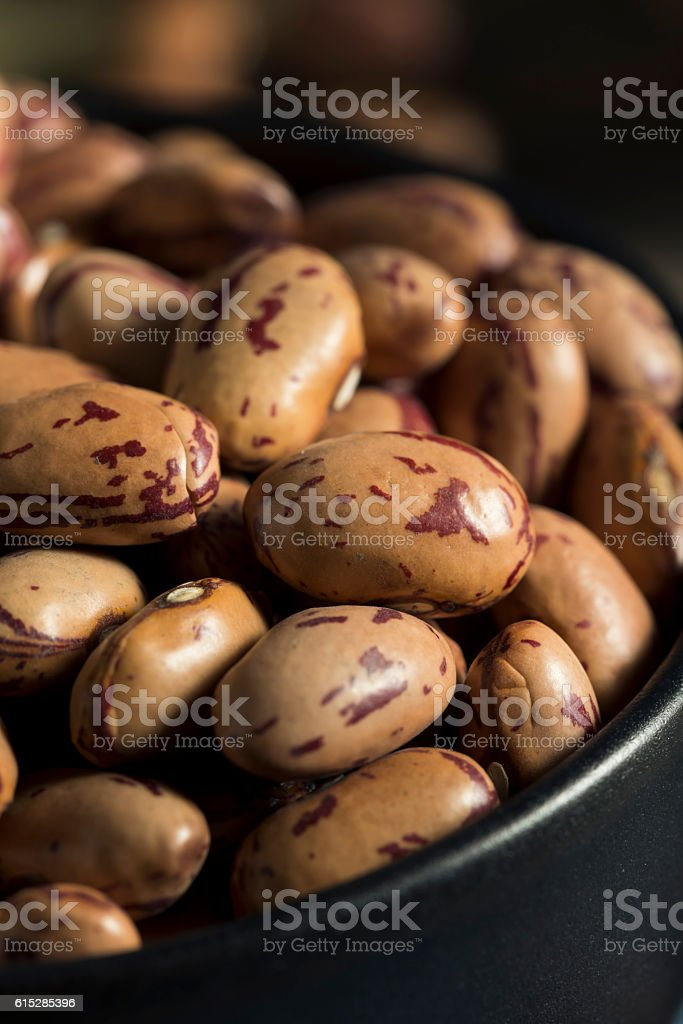 Healthy Raw Organic Cranberry Beans stock photo