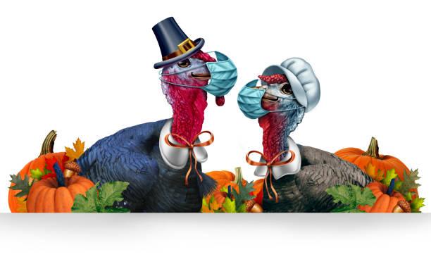 acción de gracias saludable - thanksgiving turkey fotografías e imágenes de stock