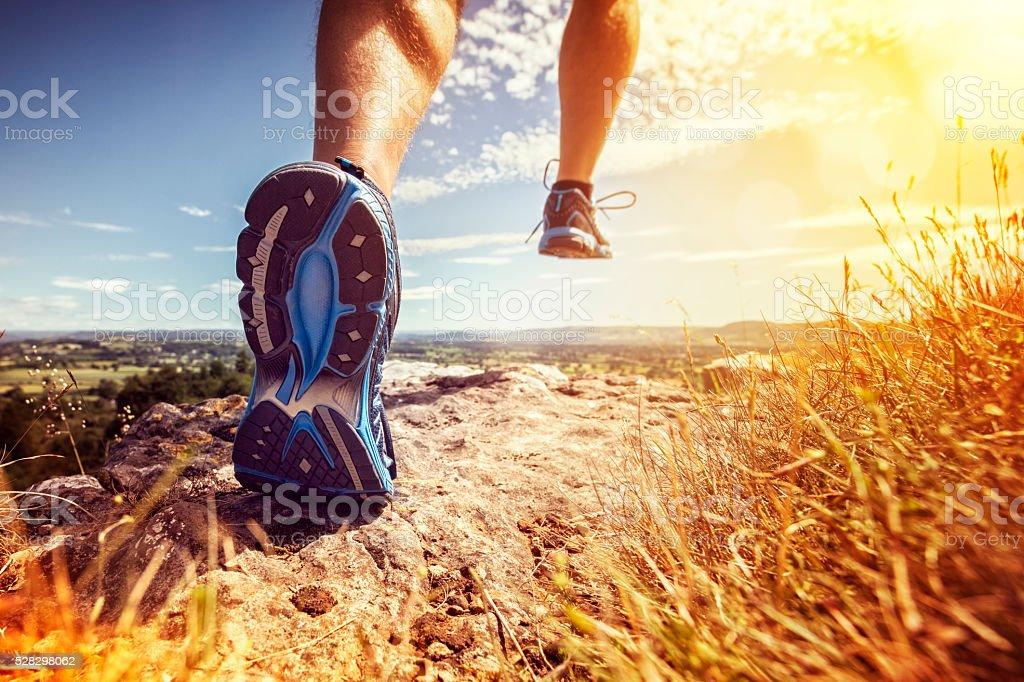 Здоровые для бега по пересеченной местности - Стоковые фото Атлетизм роялти-фри