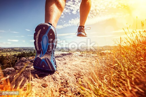 istock Healthy trail running 528298062
