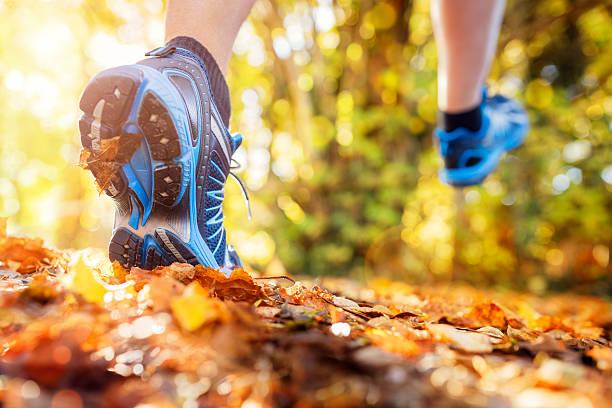senda para correr sanos - trail running fotografías e imágenes de stock